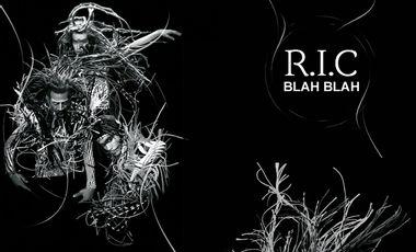 Visuel du projet R.I.C     Nouvel album    +    2 Clips