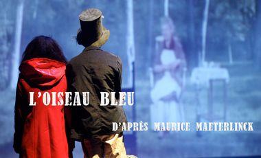 Project visual L'Oiseau Bleu