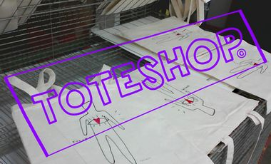 Visuel du projet TOTESHOP