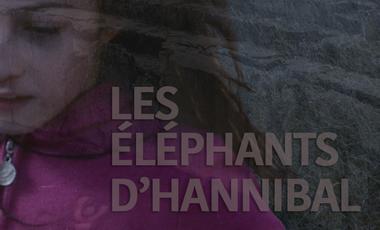 Visuel du projet LES ÉLÉPHANTS D'HANNIBAL