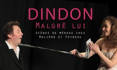 """Visueel van project """"Dindon malgré lui"""" en Avignon !"""