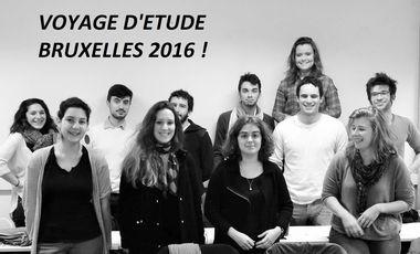 Visuel du projet Voyage pédagogique à Bruxelles