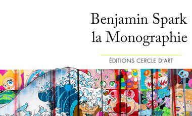 Project visual Première monographie de Benjamin Spark