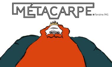 Project visual Métacarpe