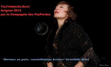 """Project visual """"Toi,l'imbécile.Sors!"""" Avignon 2013 Théâtre"""