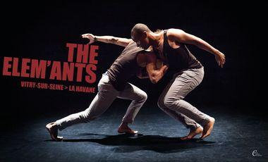 Project visual The Elem'Ants / Vitry-sur-Seine > La Havane