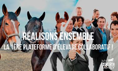 Project visual Ouvrons le monde du cheval à tous !