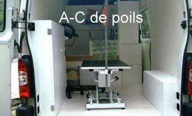Visuel du projet A-C de poils