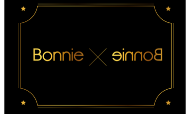 Project visual Bonnie & Bonnie