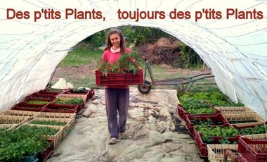 Project visual Des p'tits PLANTS, toujours des p'tits PLANTS