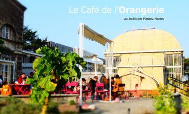Visueel van project Café de l'Orangerie