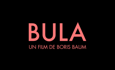 Visueel van project Bula