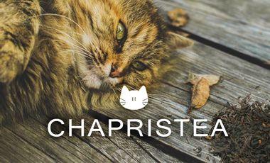 Visuel du projet Chapristea !