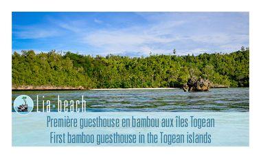 Visueel van project Lia Beach, un projet d'éco-tourisme aux îles Togean