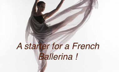 Project visual A starter for French ballerina !