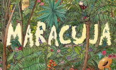 Visuel du projet Maracuja : 1er album!