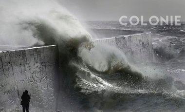 Visuel du projet COLONIE
