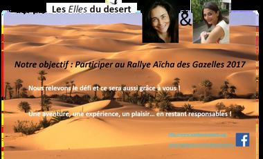 Visueel van project Les Elles du désert, une histoire d'amitié, une aventure humaine et sportive, un projet solidaire et de partage