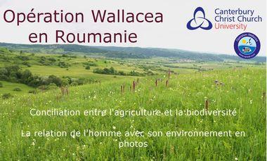 Visuel du projet Expédition Wallacea en Roumanie