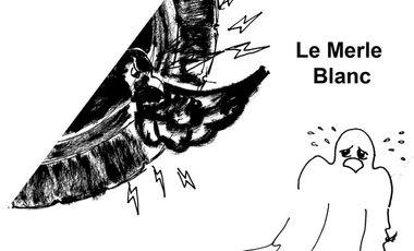 Visuel du projet Opéra pour enfants Le Merle Blanc
