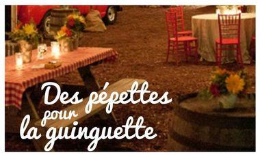 Visueel van project Des pépettes pour la Guinguette !