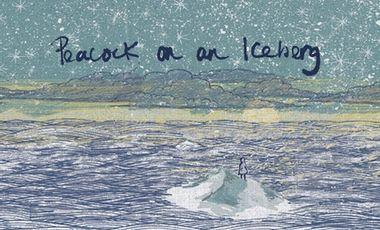 Visuel du projet ORANGE BUD - Nouvel Album - PEACOCK ON AN ICEBERG