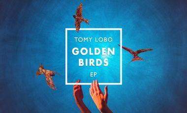 Visueel van project TOMY LOBO // GOLDEN BIRDS - EP