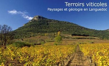Visuel du projet Terroirs viticoles