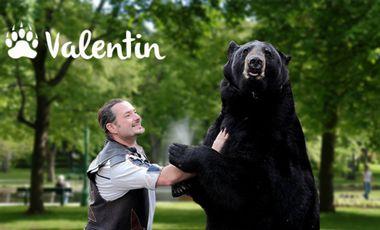 Project visual Féérie médiévale avec l'ours Valentin
