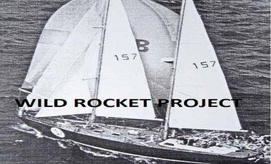 Visuel du projet Wild Rocket Project
