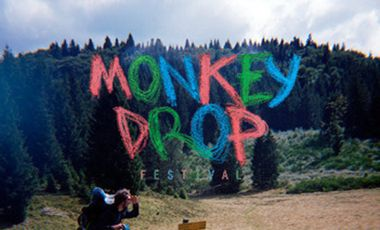 Project visual MONKEY DROP Festival