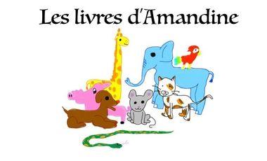 Project visual Les livres d'Amandine