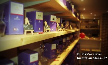 Project visual Point de vente BiBoViNo au Mans