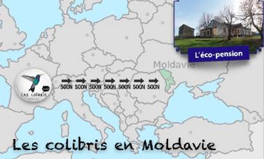 Visueel van project Les colibris en Moldavie !