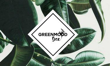 Visueel van project Greenmood Box