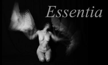 Project visual Essentia