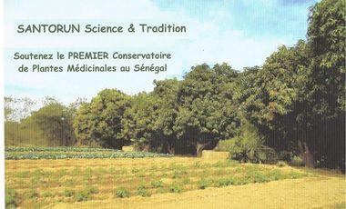 Project visual SANTORUN Science & Tradition