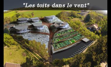 """Project visual """"Les toits dans le vent"""""""