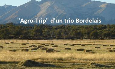 "Project visual ""Agro-Trip"" d'un trio Bordelais"