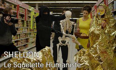 Project visual Sheldon, Le Squelette Humaniste