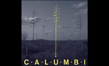 Project visual CALUMBI - 1ER ALBUM