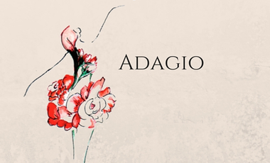 Project visual ADAGIO