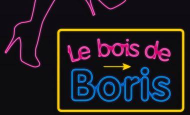 Project visual Le Bois de Boris