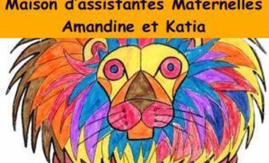 Visuel du projet MAM LES PETITS LIONS BLEUS