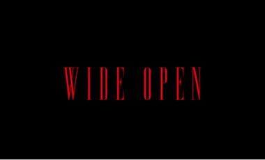 Visueel van project Wide Open