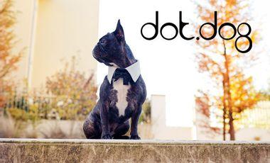 Project visual Dot.Dog: Accessoires de Luxe pour animaux de compagnie