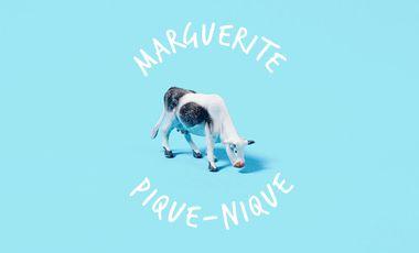 Project visual Marguerite pique-nique !