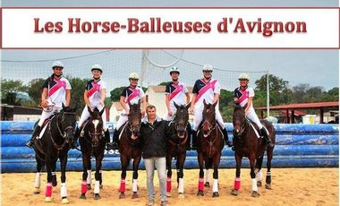 Visuel du projet Les Horse-Balleuses d'Avignon