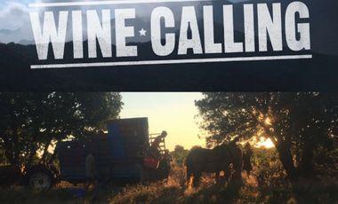 Visuel du projet Wine Calling