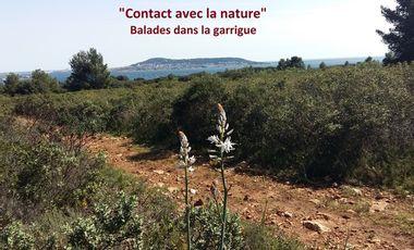 Visuel du projet Contact avec la Nature